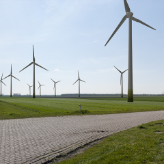 Kollumerland – Provinciedijk